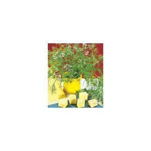 Nom du produit: Camomille Nom latin: Matricaria recutica Description variété: La Camomille est très florifère et idéale dans la préparation des tisanes. (Vivace cultivée comme une annuelle) Étalement: 15-20 cm Hauteur plant: 40-50 cm Horti-truc