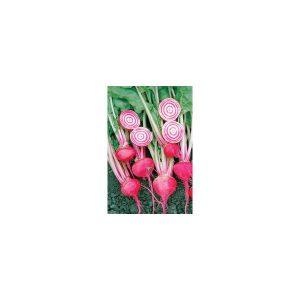 Nom du produit: Betterave Nom latin: Beta vulgaris Description espèce: La betterave 'Red Ace' d'un rouge uniforme est la plus régulière, lisse et sucrée de toutes les variétés offertes. Sa saveur et sa texture feront les délices des jardiniers. Savoureu