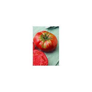 Nom du produit: Tomate - rouge Nom latin: Solanum lycopersicum Description variété: Les amateurs raffolent de cette variété de type Beefsteak en raison de ses plants vigoureux et de sa tolérance élevée à plusieurs maladies. Très uniforme et productive.