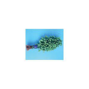 Nom du produit: Poireau Nom latin: Allium polyanthum Description variété: Le Lancelot est le poireau idéal pour tous vos plats de début d'automne. Avec son port érigé et un feuillage bleuté, il produit un fût blanc pouvant atteindre 30 cm. Semé densémen