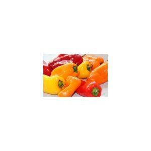 Nom du produit: Poivron doux Nom latin: Capsicum annuum Description variété: Petit piment de forme ronde intrigante, aplati, avec des lobes allongés. Mad Hatter est croustillant et doux, et se consomme au stade vert ou rouge. Gros plant indéterminé qui