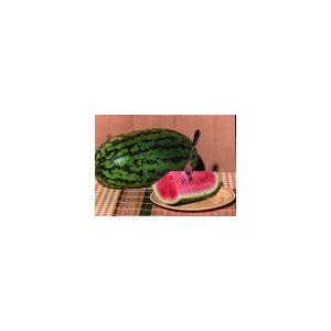 Nom du produit: Melon - Miel Nom latin: Cucumis melo Description variété: Voici un melon hâtif qui produit de beaux gros fruits lourds. De forme ronde, sa peau est lisse et sa chair parfumée est d'un beau vert lime. Maturité (jours): 75 Forme Fruit