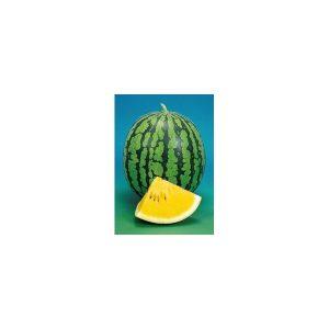 Nom du produit: Melon d'eau (avec pépins) Nom latin: Citrullus lanatus Description variété: Melon d'eau allongé, de bonne grosseur et assez hâtif pour mûrir sous notre climat. Chair rouge intense, à texture sucrée et savoureuse. Melon avec pépins. M