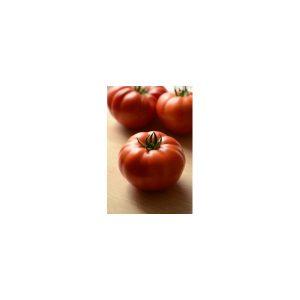 Nom du produit: Tomate - rouge Nom latin: Solanum lycopersicum Description variété: Superbe qualité. Cette variété produit des fruits aplatis, de bon calibre. Un délice pour le jardinier amateur. Port plant: Semi-Déterminé Maturité (jours): 75 Gro