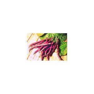 Nom du produit: Haricot nain vert - type Français Nom latin: Phaseolus vulgaris Description variété: La variété Banga est un haricot vert de type français. Fin et croustillant, ce petit haricot pousse sur un plant compact qui offre un rendement exceptio