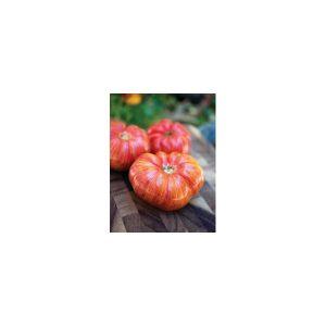 Nom du produit: Tomate - rouge Nom latin: Solanum lycopersicum Description variété: Genuwine remplace la variété Brandywine et atteint sa maturité jusqu'à 2 semaines plus vite! Il s'agit d'un croisement entre deux variétés ancestrales (dont Brandywine),
