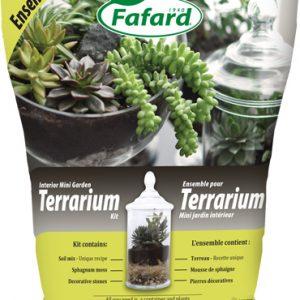 Ensemble pour Terrarium – Mini jardin intérieur-0